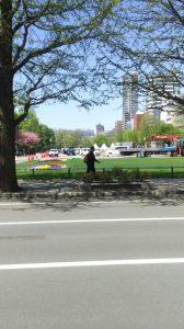 大通公園。雪山を眺める。